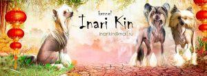 Inari Kin