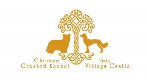 from Vikings Castle