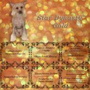 Star Dynasty Gold