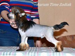 Aurum Time Zodiak