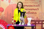 Club Dog Show Club Winner – hairless male Lorita Star Pervyy Potseluy